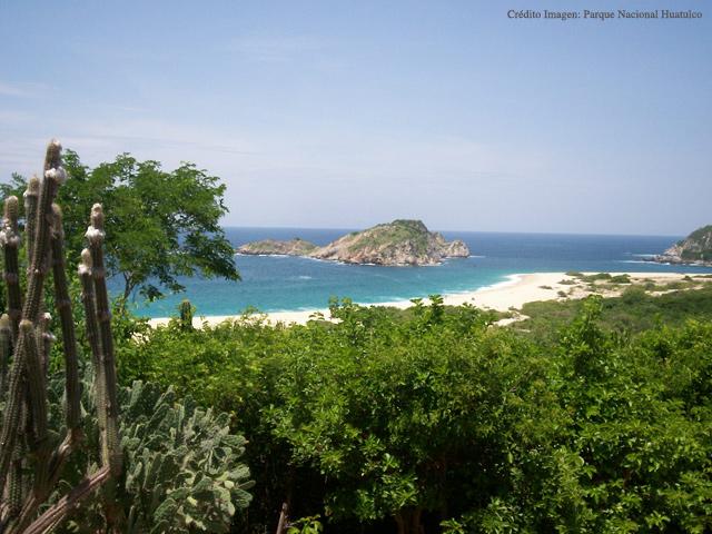 Oaxaca, un estado magnífico