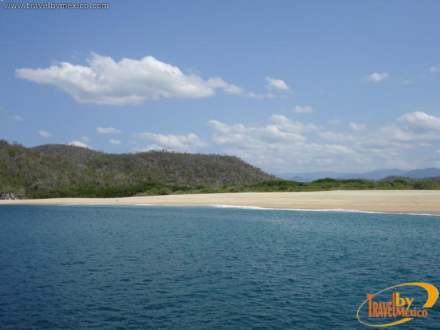 Bahía Organo