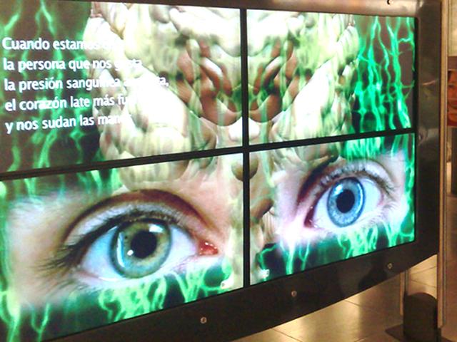 Exposición El Cerebro, nuestro puente al mundo