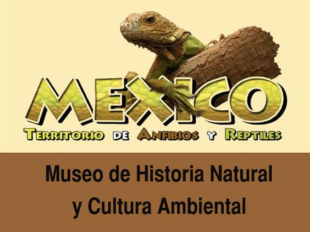 México, Tierra de Anfibios y Reptiles en el Museo de Historia Natural