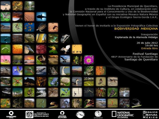 Festival de Santiago 2012 en Querétaro