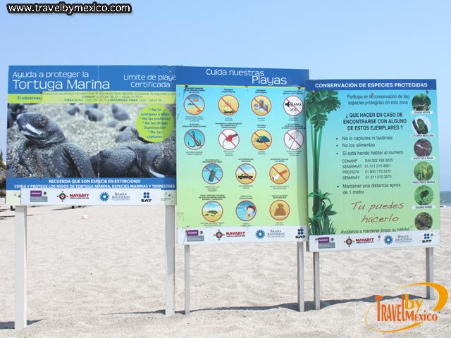 Centros para la Conservación de las Tortugas Marinas en México