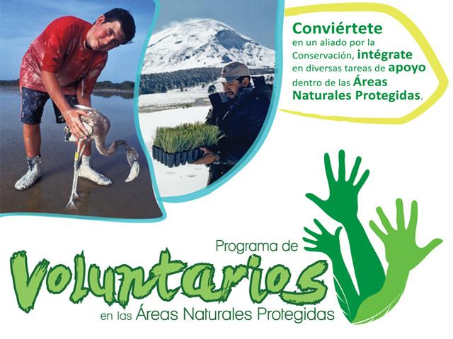 Participa como voluntario en las Áreas Naturales Protegidas de México