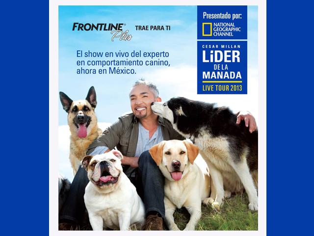 El encantador de perros César Millán llega a México