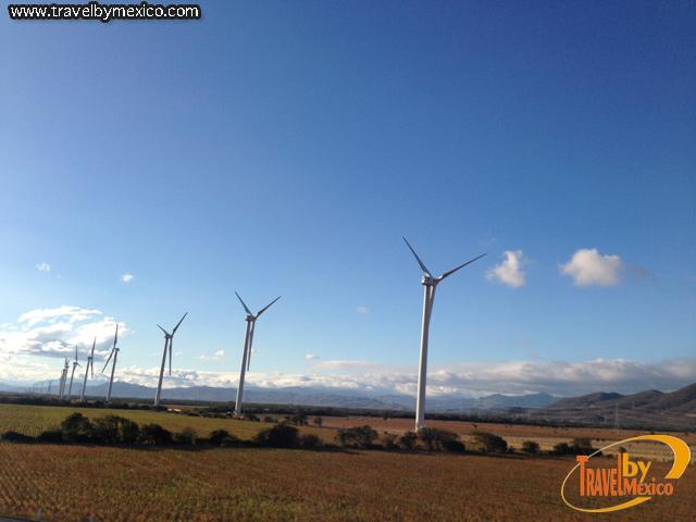 La Energía Eólica está cobrando auge en México