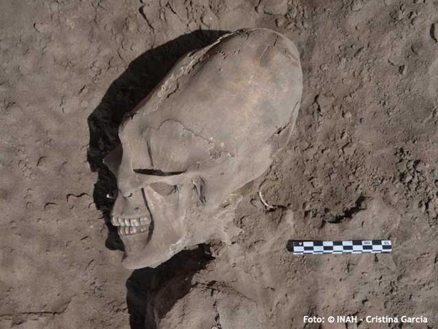 Los cráneos alargados de Onavas: ¿deformación intencional u origen extraterrestre?