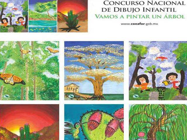 Pinta un árbol y gana premios con la Comisión Nacional Forestal