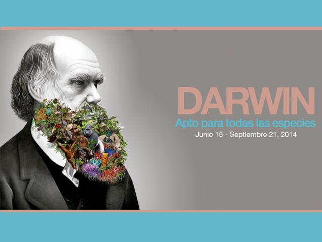 Charles Darwin todo el verano en el Antiguo Colegio de San Ildefonso