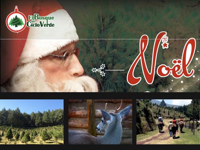 Bosque del Ciclo Verde en Veracruz: Segunda casa de Santa Claus