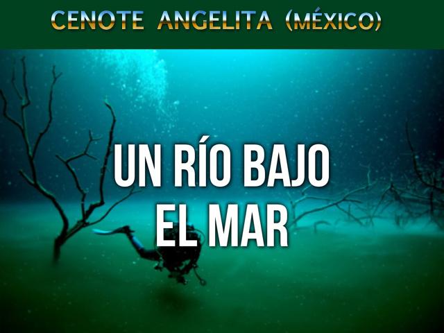 Cenote Angelita en México: buceando entre las nubes