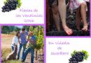 Ven con tu familia y amigos a celebrar la Fiesta de las Vendimias en Querétaro