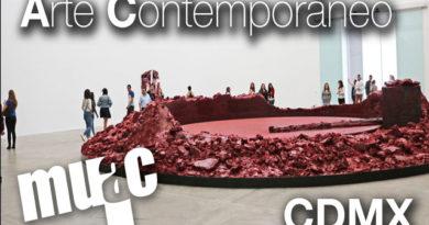 No dejes de visitar la exposición de Anish Kapoor en el MUAC