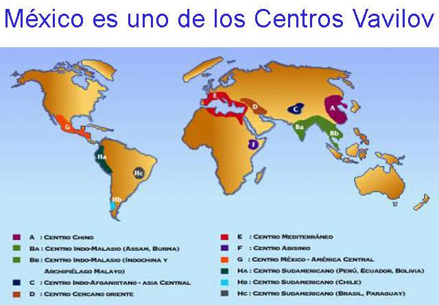 México es uno de los Centros Vavilov