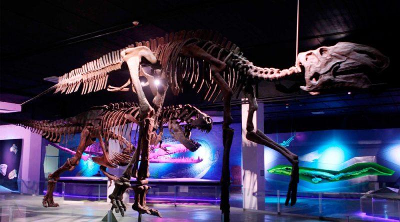 Puebla tendrá una Noche de Museos este sábado 28 de octubre.