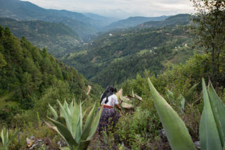 Bebidas Regionales de México: Pulque de Tlahuitoltepec
