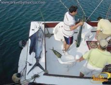 Pesca deportiva en Manzanillo
