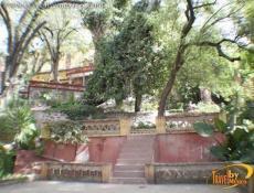 San Miguel de Allende 5