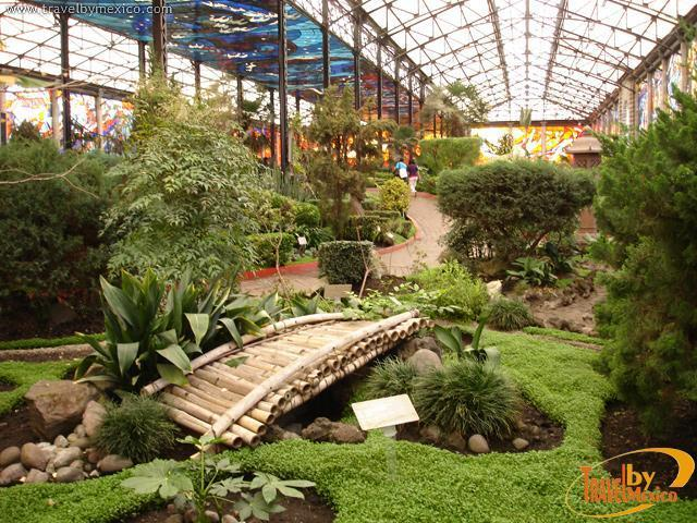 Cosmovitral botanical garden toluca for Jardines mexico