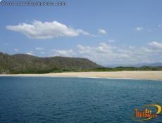 Organo Bay