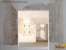 The Oaxaca Museum of Contempory Art (MACO)